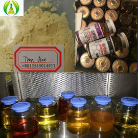China Hormona esteroide farmacêutica legal Primabolan Methenolone Enanthate fornecedor